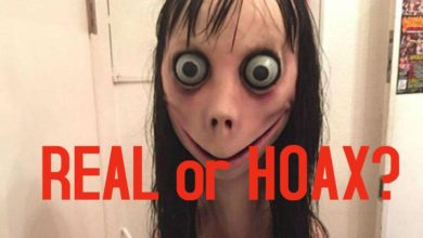 Photo of Momo challenge, is it real or hoax?